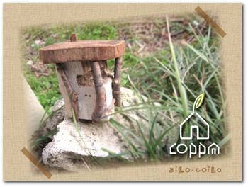 Accoppa21
